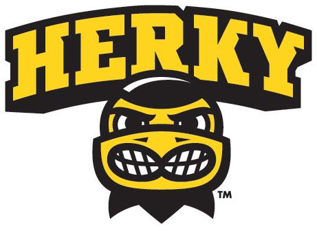 Iowa Decals Herky Head Wordmark Hawkeye Vinyl Car Decals
