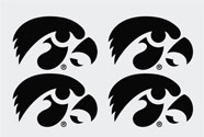 Iowa Hawkeye Tigerhawk Set, vinyl decals