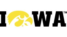 Iowa Wordmark with Tigerhawk, vinyl decal
