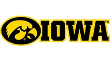 Iowa with Tigerhawk Logo, Multicolored 2