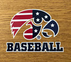 Iowa Patriotic Tigerhawk Baseball, Option 1, Vinyl Decal