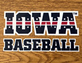 Iowa Patriotic Tigerhawk Baseball, Option 2, Vinyl Decal