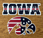 Iowa Patriotic Tigerhawk, Vinyl Decal